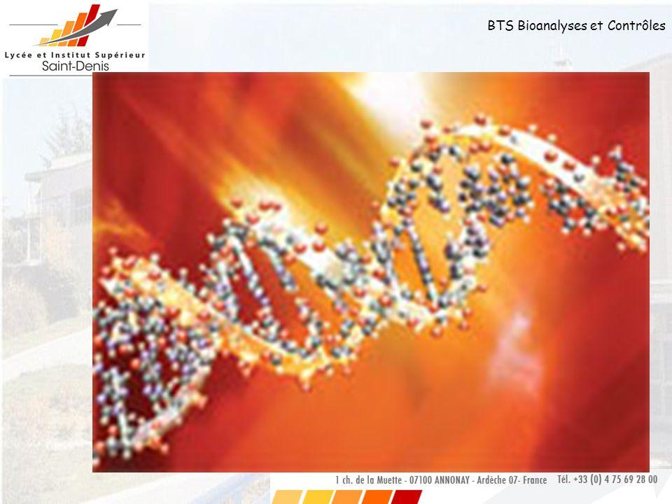 BTS Bioanalyses et Contrôles