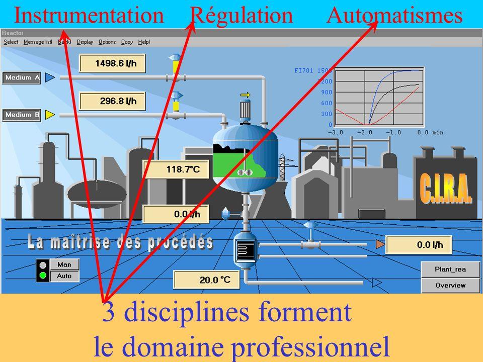 RégulationInstrumentationAutomatismes 3 disciplines forment le domaine professionnel