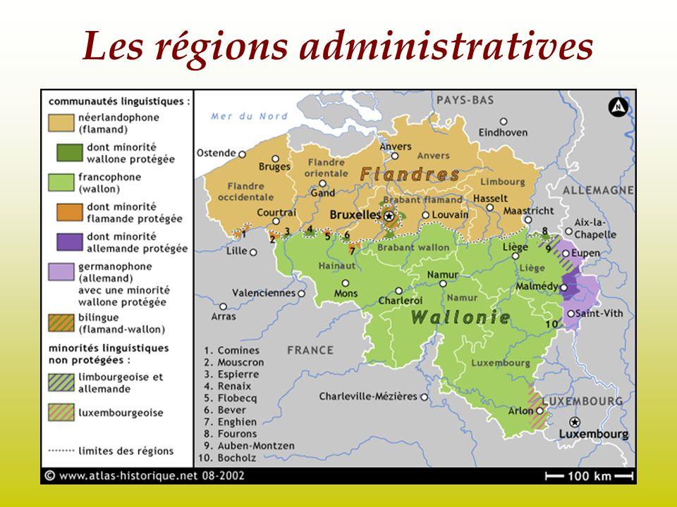 Le dispositif institutionnel, exemples: -Le choix des ministres -La langue en usage à la gare de Bruxelles -La langue du Parlement et des syndicats -Les contentieux avec la Commission européenne