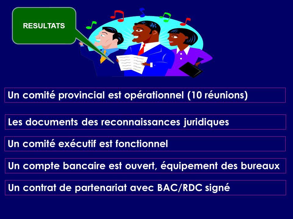 Un comité provincial est opérationnel (10 réunions) Les documents des reconnaissances juridiques Un comité exécutif est fonctionnel Un compte bancaire est ouvert, équipement des bureaux Un contrat de partenariat avec BAC/RDC signé RESULTATS