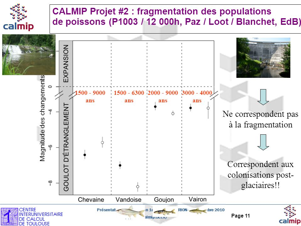 http://www.calmip.cict.fr/ Présentation CALMIP - Bilan 1er année HYPERION- 30 Novembre 2010 Page 11 CALMIP Projet #2 : fragmentation des populations d
