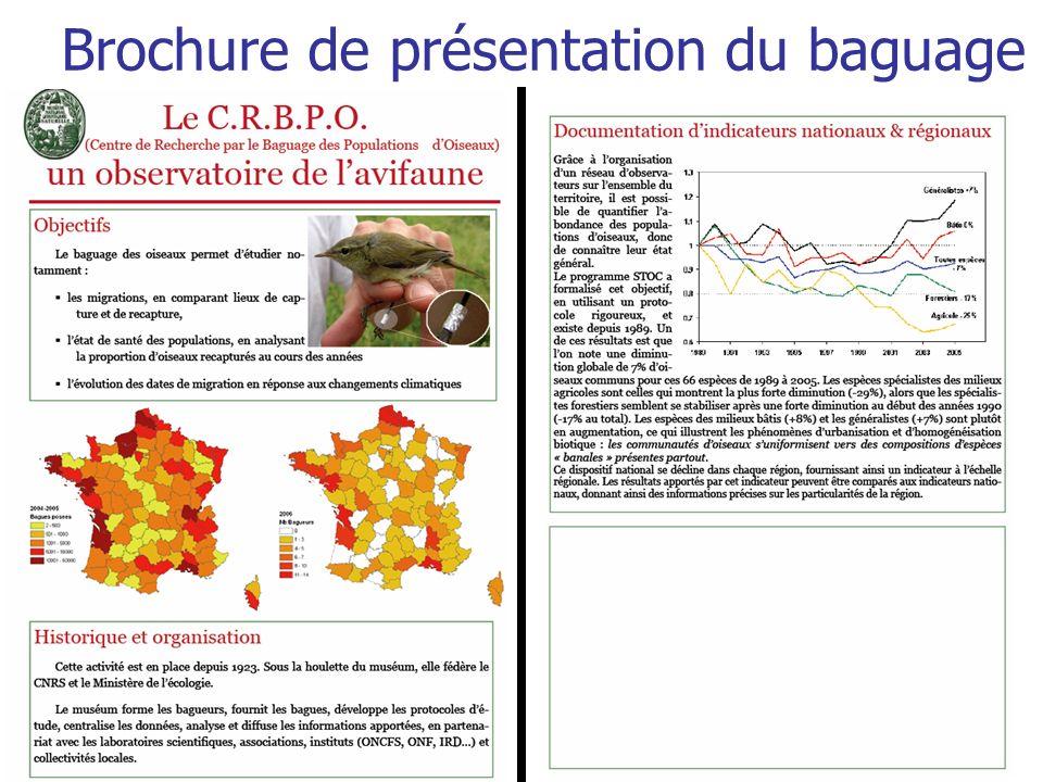 Brochure de présentation du baguage