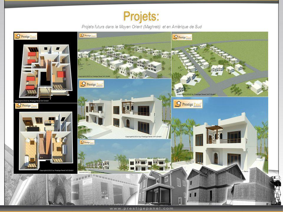 Projets: Développements sociaux