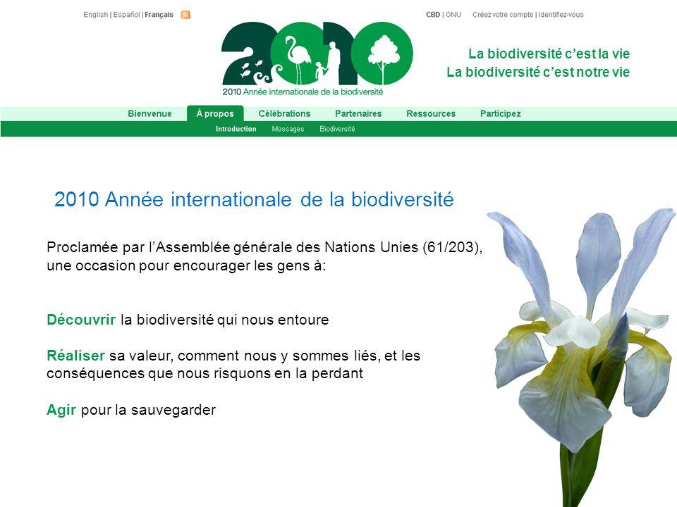 La biodiversité cest la vie La biodiversité cest notre vie Proclamée par lAssemblée générale des Nations Unies (61/203), une occasion pour encourager les gens à: Découvrir la biodiversité qui nous entoure Réaliser sa valeur, comment nous y sommes liés, et les conséquences que nous risquons en la perdant Agir pour la sauvegarder 2010 Année internationale de la biodiversité