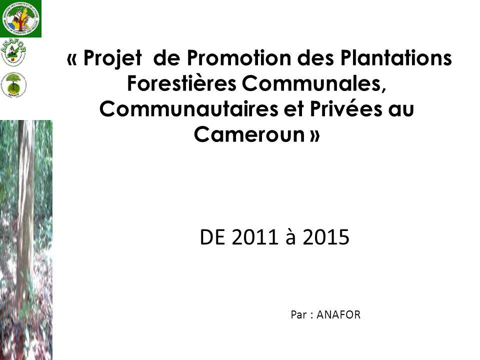 DE 2011 à 2015 Par : ANAFOR « Projet de Promotion des Plantations Forestières Communales, Communautaires et Privées au Cameroun »