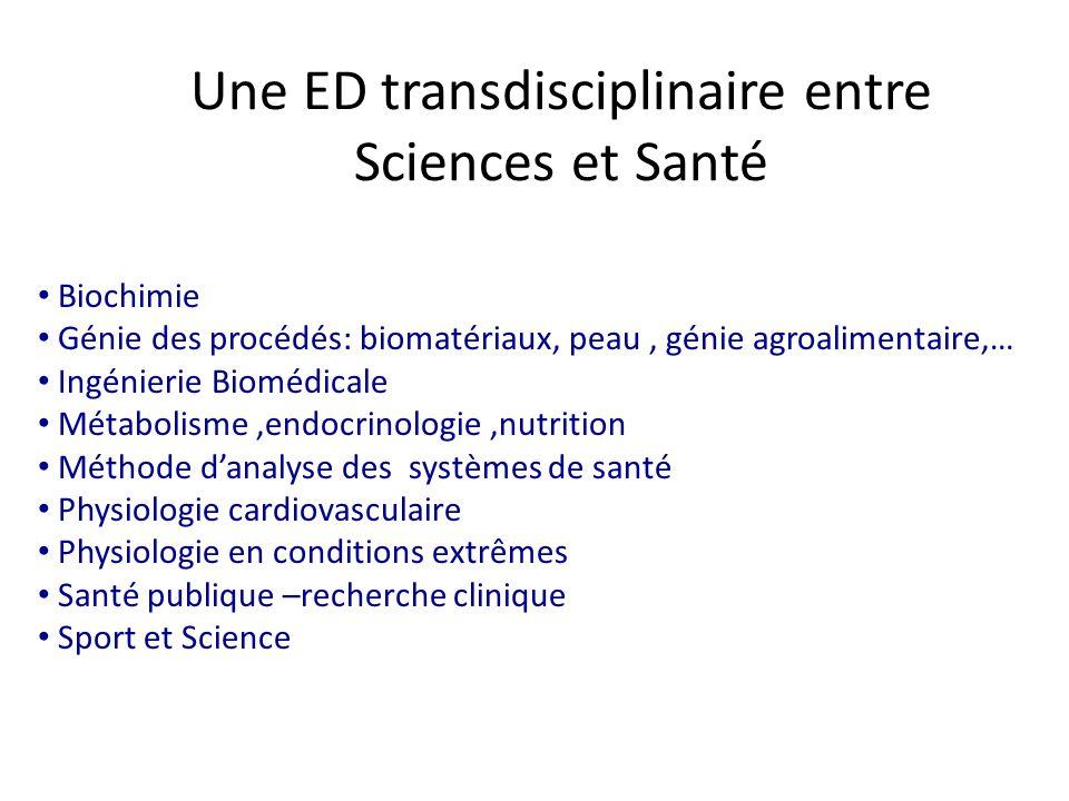 Devenir doctorants 2004-2006