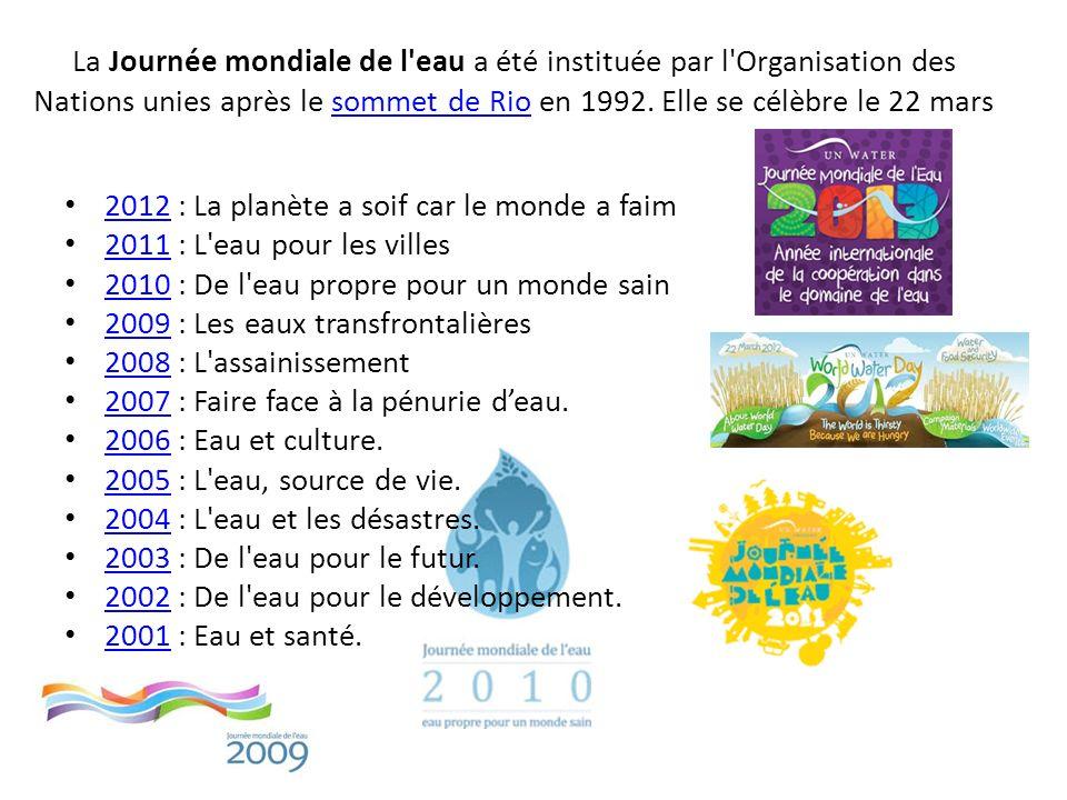 La Journée mondiale de l'eau a été instituée par l'Organisation des Nations unies après le sommet de Rio en 1992. Elle se célèbre le 22 marssommet de