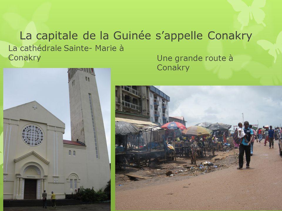 Des faits La Guinée a 11200000 habitants (en 2010) Quelques grandes villes en Guinée sont Conakry, Kindia, Kankan, Boké, NZérékore, Faranah, Mamou et Labe.