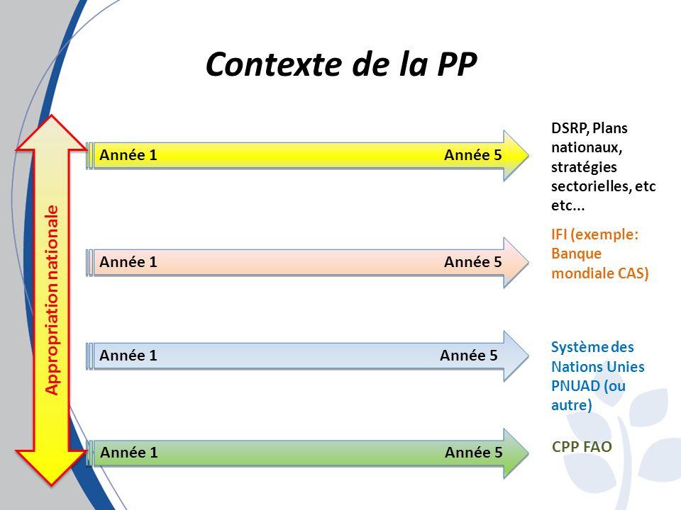 Contexte de la PP Année 1Année 5 DSRP, Plans nationaux, stratégies sectorielles, etc etc...
