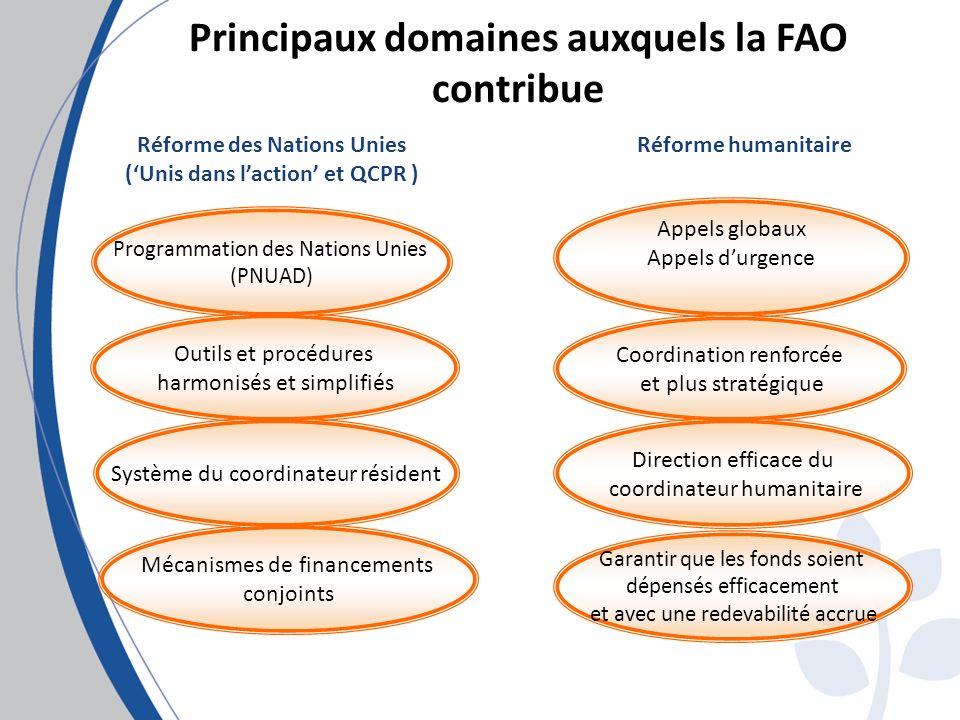 Réforme des Nations Unies (Unis dans laction et QCPR ) Principaux domaines auxquels la FAO contribue Programmation des Nations Unies (PNUAD) Outils et procédures harmonisés et simplifiés Système du coordinateur résident Mécanismes de financements conjoints Réforme humanitaire Direction efficace du coordinateur humanitaire Appels globaux Appels durgence Coordination renforcée et plus stratégique Garantir que les fonds soient dépensés efficacement et avec une redevabilité accrue