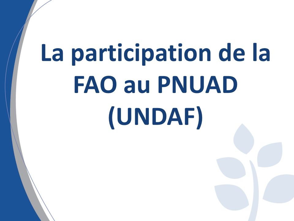 La participation de la FAO au PNUAD (UNDAF)