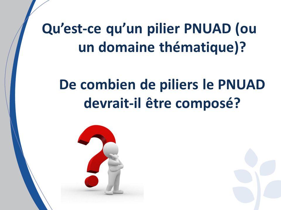 Quest-ce quun pilier PNUAD (ou un domaine thématique).