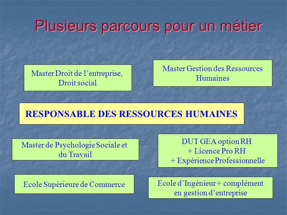 Plusieurs parcours pour un métier Master Droit de lentreprise, Droit social Master Gestion des Ressources Humaines RESPONSABLE DES RESSOURCES HUMAINES
