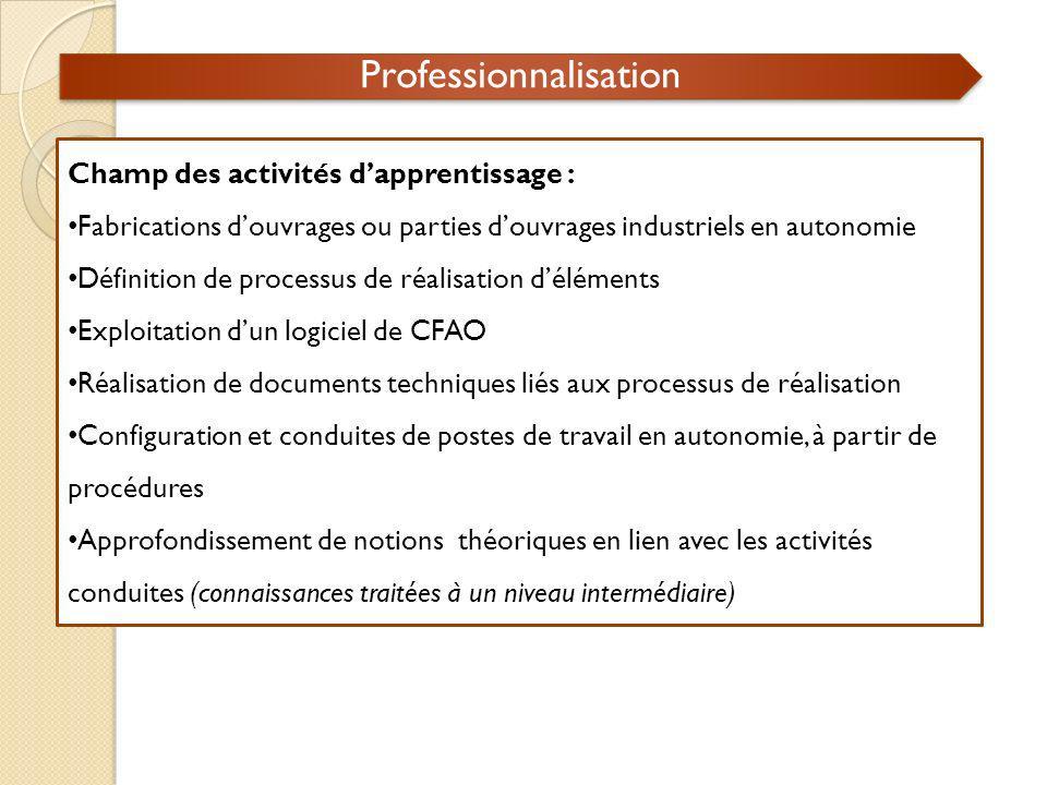 Professionnalisation Champ des activités dapprentissage : Fabrications douvrages ou parties douvrages industriels en autonomie Définition de processus