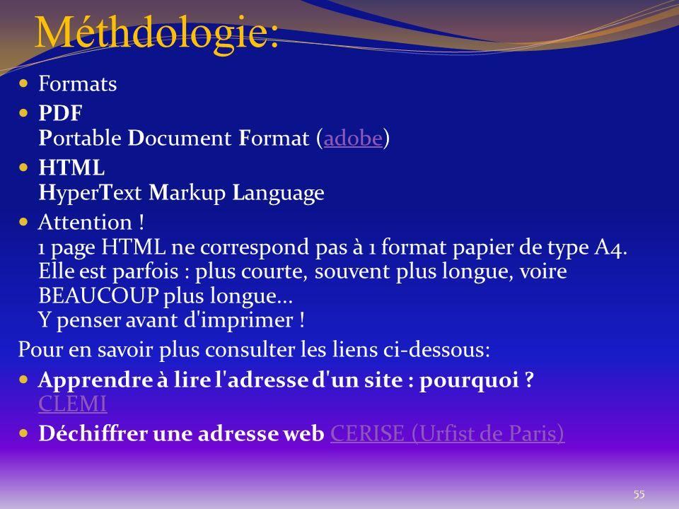 Méthdologie: 55 Formats PDF Portable Document Format (adobe)adobe HTML HyperText Markup Language Attention ! 1 page HTML ne correspond pas à 1 format