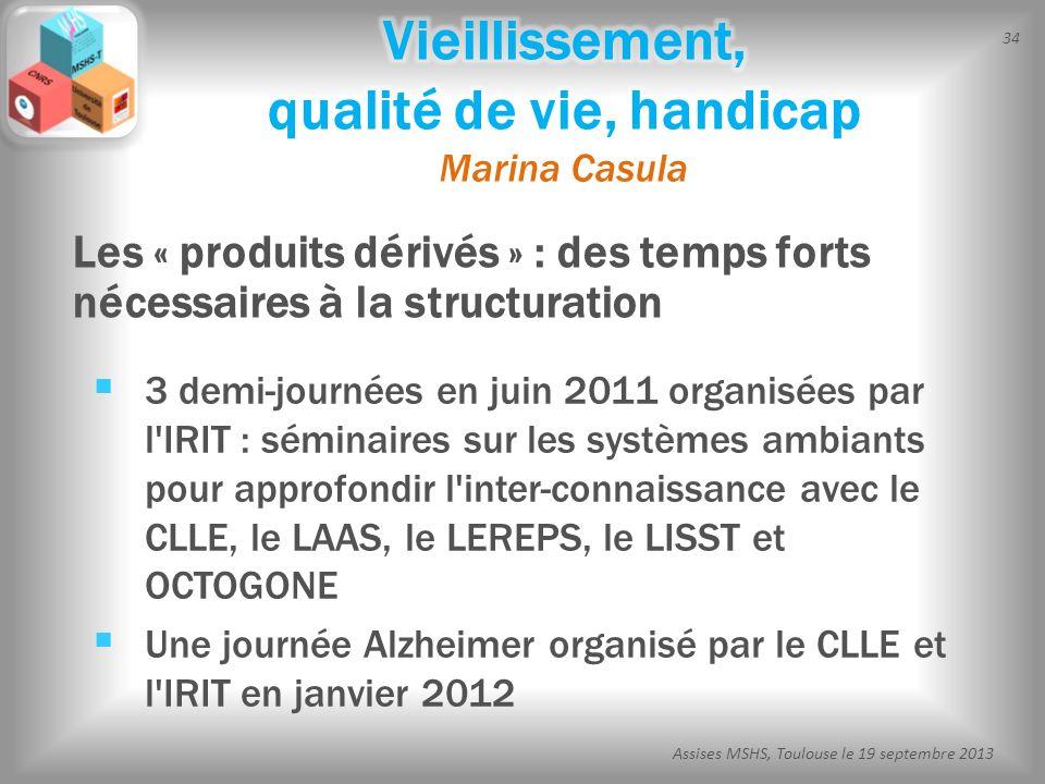 34 Assises MSHS, Toulouse le 19 septembre 2013 3 demi-journées en juin 2011 organisées par l'IRIT : séminaires sur les systèmes ambiants pour approfon