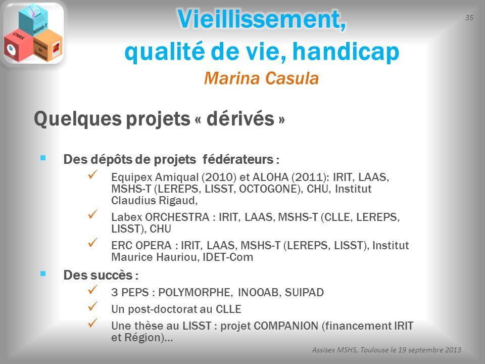 35 Assises MSHS, Toulouse le 19 septembre 2013 Des dépôts de projets fédérateurs : Equipex Amiqual (2010) et ALOHA (2011): IRIT, LAAS, MSHS-T (LEREPS,