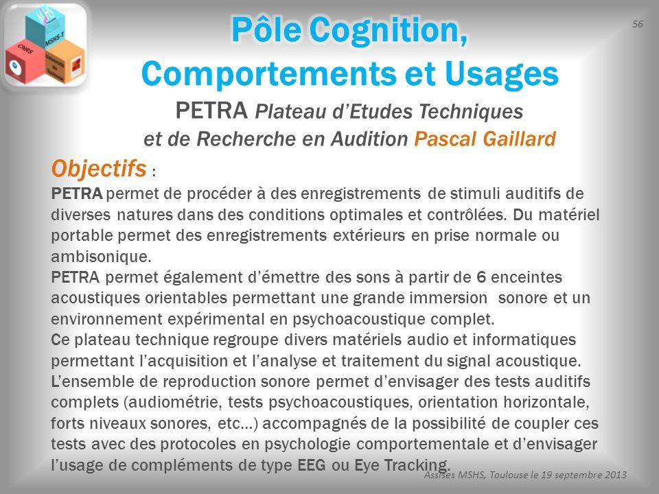 56 Assises MSHS, Toulouse le 19 septembre 2013 PETRA Plateau dEtudes Techniques et de Recherche en Audition Pascal Gaillard Objectifs : PETRA permet d
