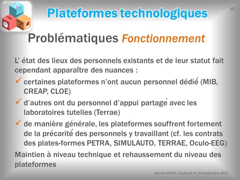 60 Assises MSHS, Toulouse le 19 septembre 2013 L état des lieux des personnels existants et de leur statut fait cependant apparai ̂ tre des nuances :