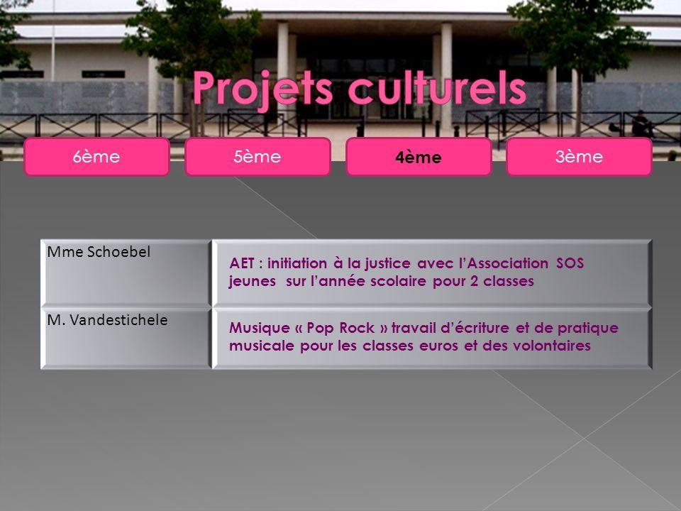 5ème6ème 4ème 3ème Mme Schoebel M. Vandestichele AET : initiation à la justice avec lAssociation SOS jeunes sur lannée scolaire pour 2 classes Musique