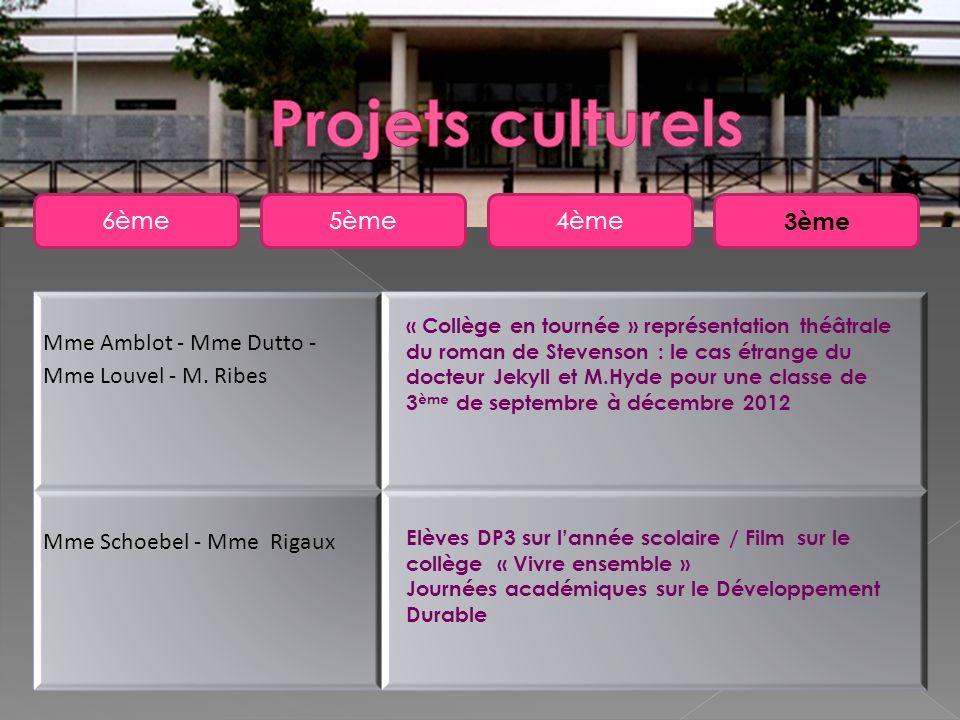 5ème6ème4ème 3ème Mme Amblot - Mme Dutto - Mme Louvel - M. Ribes Mme Schoebel - Mme Rigaux « Collège en tournée » représentation théâtrale du roman de