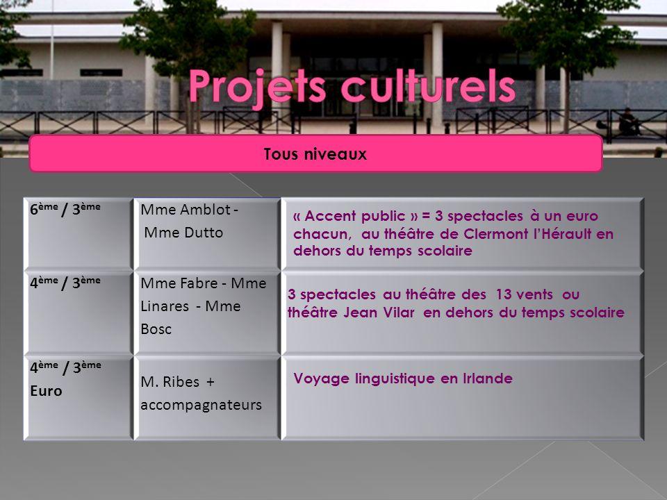 6 ème / 3 ème Mme Amblot - Mme Dutto 4 ème / 3 ème Mme Fabre - Mme Linares - Mme Bosc 4 ème / 3 ème Euro M. Ribes + accompagnateurs « Accent public »