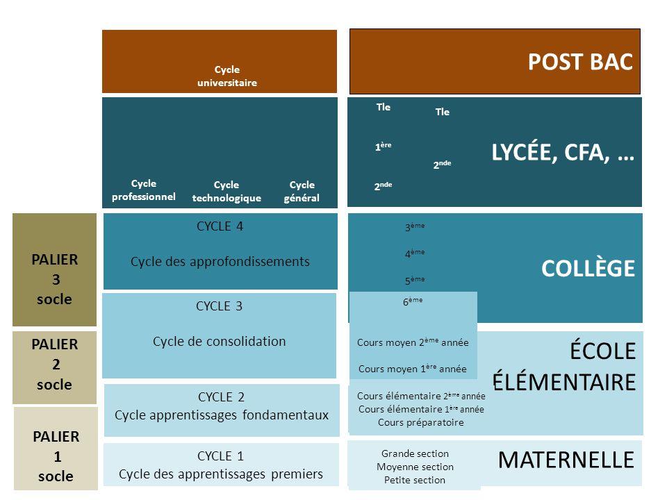 COLLÈGE ÉCOLE ÉLÉMENTAIRE MATERNELLE LYCÉE, CFA, … POST BAC CYCLE 1 Cycle des apprentissages premiers CYCLE 2 Cycle apprentissages fondamentaux CYCLE