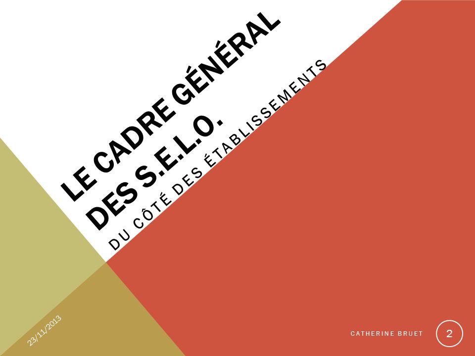 LE CADRE GÉNÉRAL DES S.E.L.O. DU CÔTÉ DES ÉTABLISSEMENTS 23/11/2013 CATHERINE BRUET 2