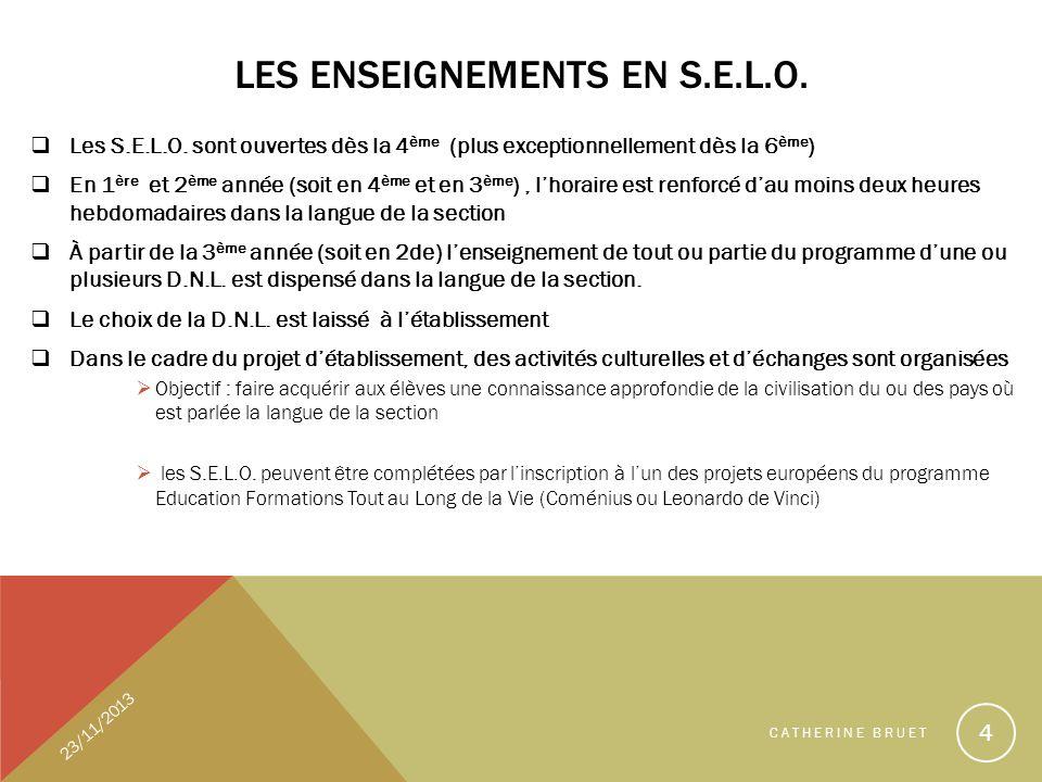 LES ENSEIGNEMENTS EN S.E.L.O. Les S.E.L.O. sont ouvertes dès la 4 ème (plus exceptionnellement dès la 6 ème ) En 1 ère et 2 ème année (soit en 4 ème e