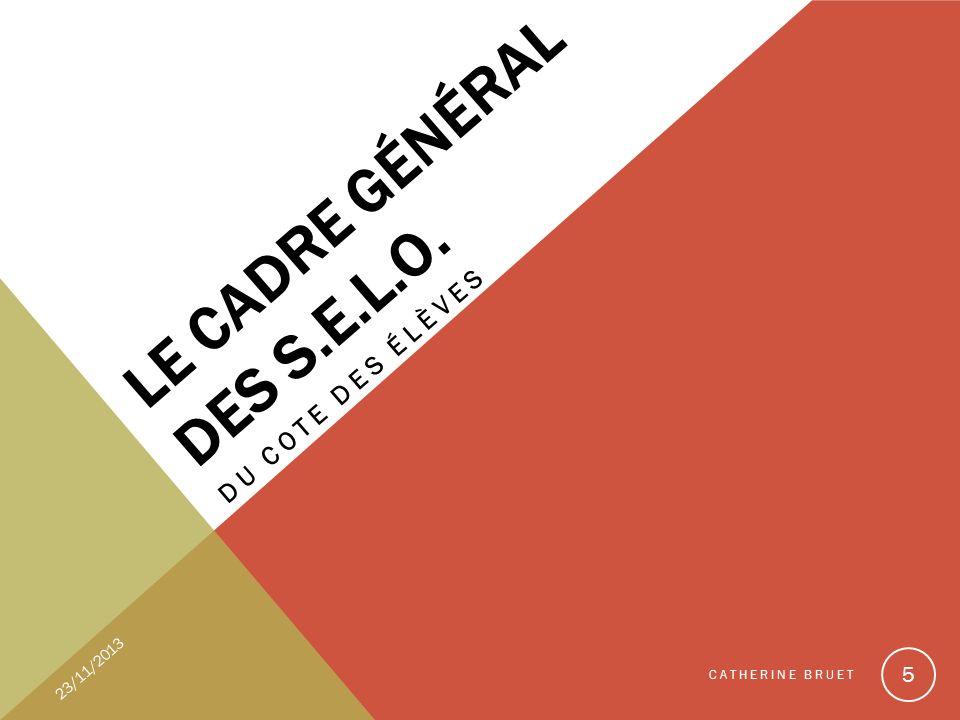 UN ENTRETIEN Dans la langue de la section Il porte sur les travaux et activités effectués dans lannée en D.N.L.