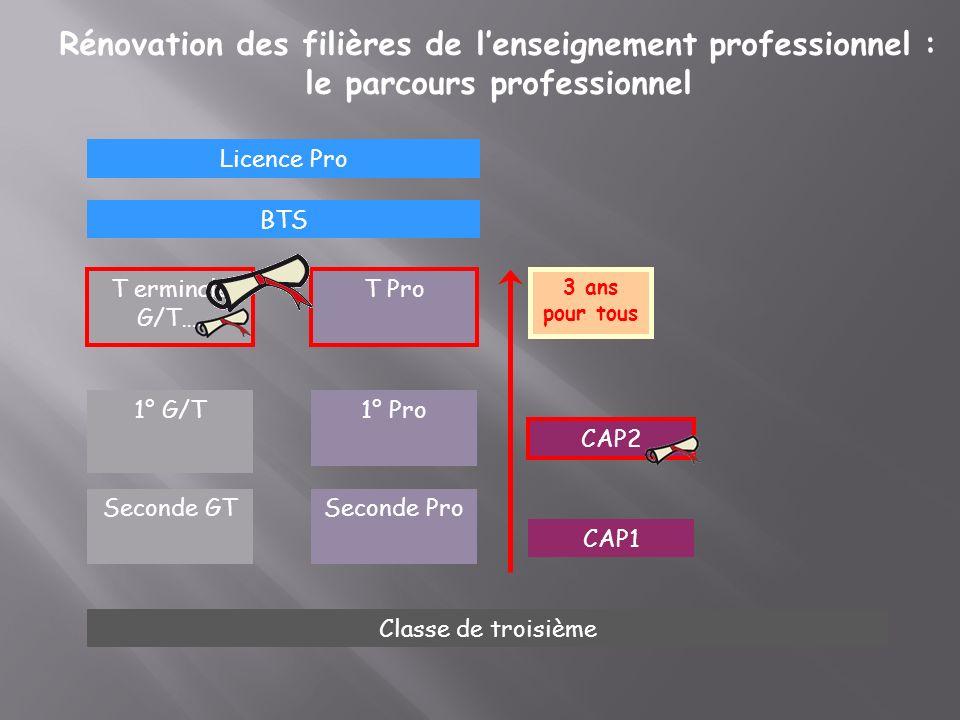 Rénovation des filières de lenseignement professionnel : le parcours professionnel Seconde GT CAP2 1° Pro1° G/T Classe de troisième T erminale G/T…. T