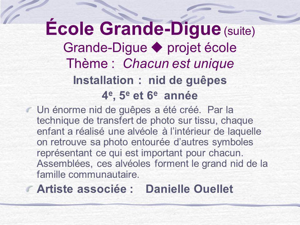 École Grande-Digue (suite) Grande-Digue projet école Thème : Chacun est unique Installation : nid de guêpes 4 e, 5 e et 6 e année Un énorme nid de guê