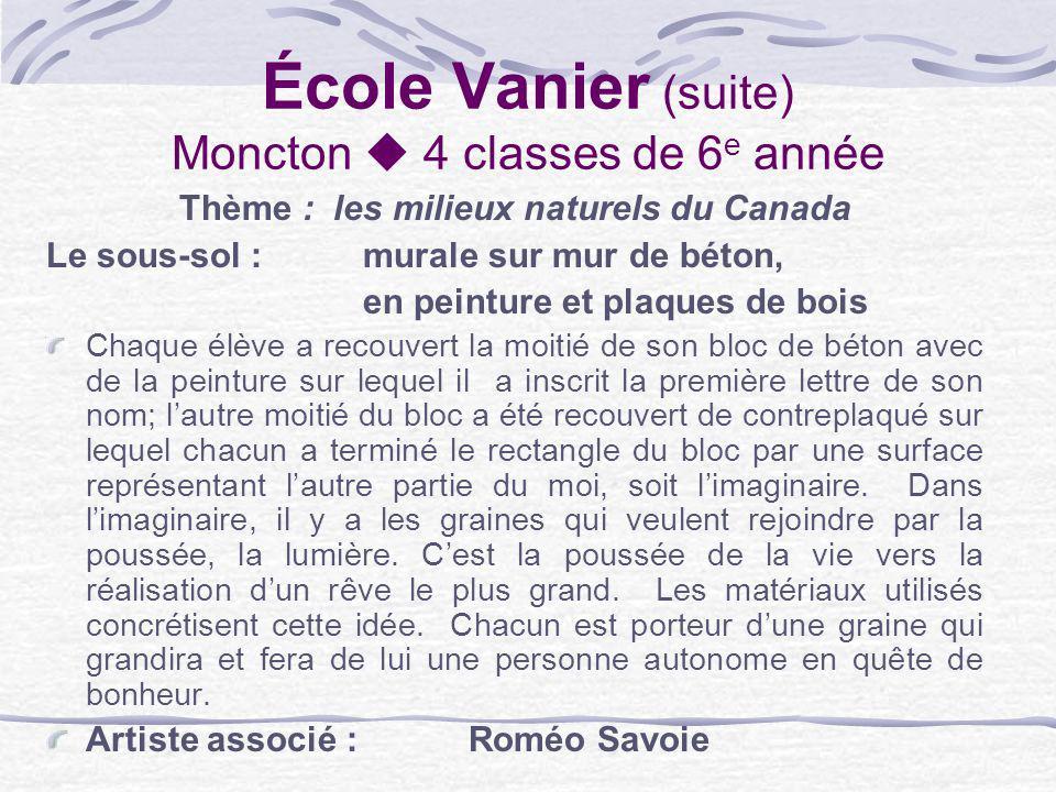 École Vanier (suite) Moncton 4 classes de 6 e année Thème : les milieux naturels du Canada Le sous-sol : murale sur mur de béton, en peinture et plaqu