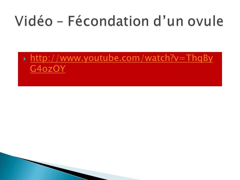 http://www.youtube.com/watch?v=ThqBy G4ozOY http://www.youtube.com/watch?v=ThqBy G4ozOY