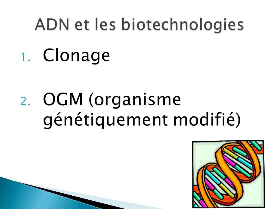 1. Clonage 2. OGM (organisme génétiquement modifié)