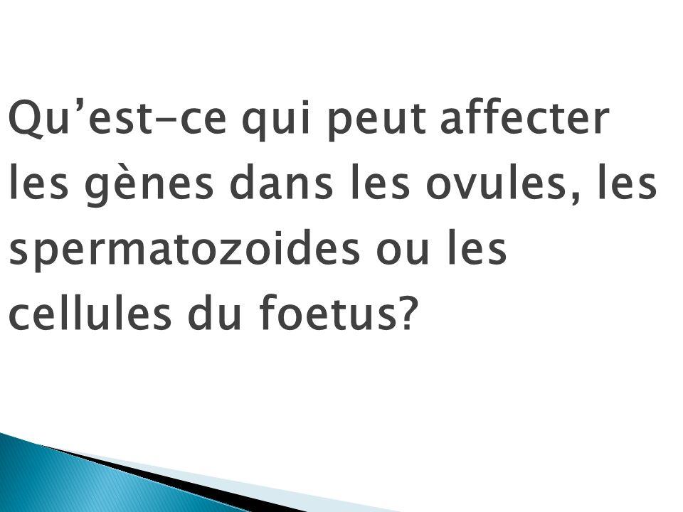 Quest-ce qui peut affecter les gènes dans les ovules, les spermatozoides ou les cellules du foetus?