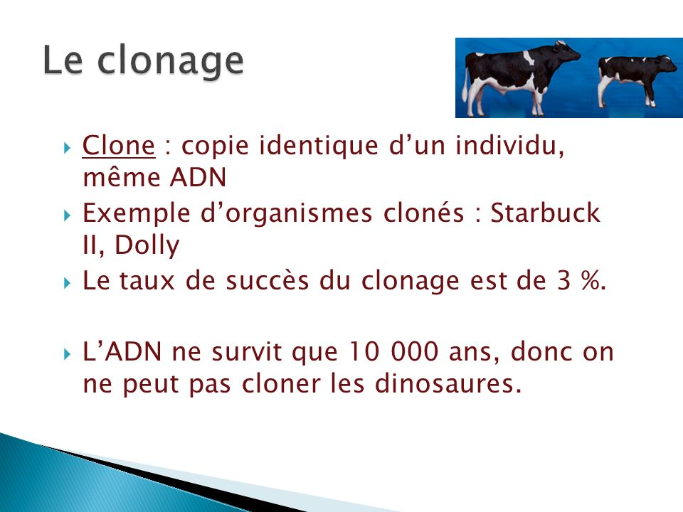 Clone : copie identique dun individu, même ADN Exemple dorganismes clonés : Starbuck II, Dolly Le taux de succès du clonage est de 3 %. LADN ne survit