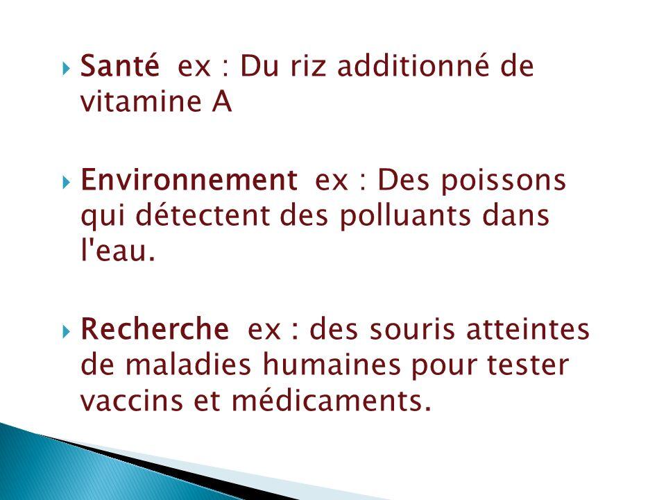 Santé ex : Du riz additionné de vitamine A Environnement ex : Des poissons qui détectent des polluants dans l'eau. Recherche ex : des souris atteintes