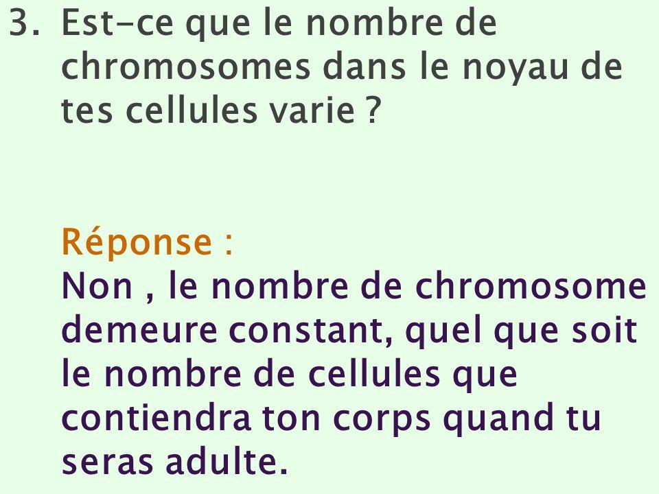 3.Est-ce que le nombre de chromosomes dans le noyau de tes cellules varie ? Réponse : Non, le nombre de chromosome demeure constant, quel que soit le