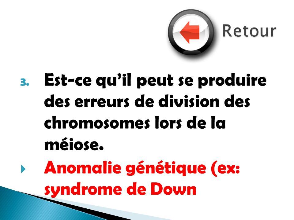 3. Est-ce quil peut se produire des erreurs de division des chromosomes lors de la méiose. Anomalie génétique (ex: syndrome de Down