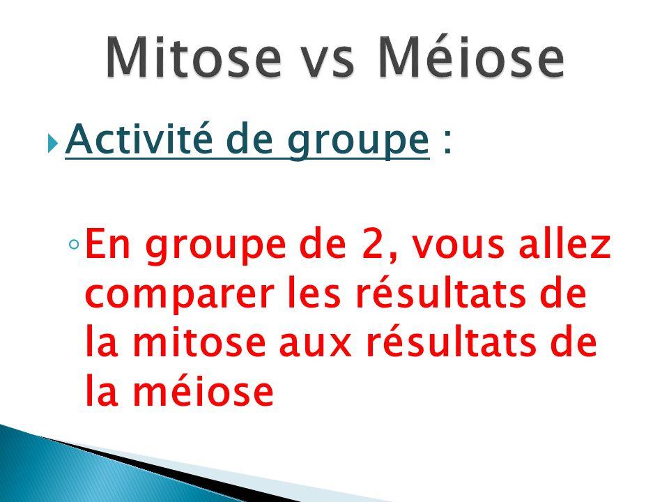 Activité de groupe : En groupe de 2, vous allez comparer les résultats de la mitose aux résultats de la méiose