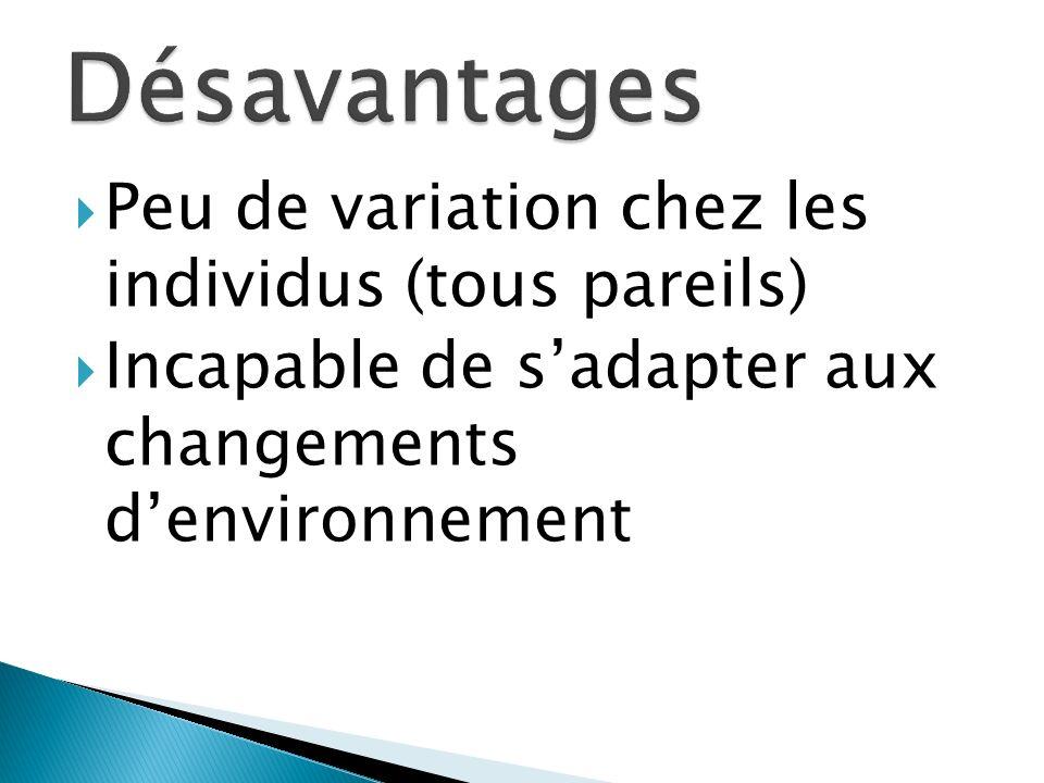 Peu de variation chez les individus (tous pareils) Incapable de sadapter aux changements denvironnement