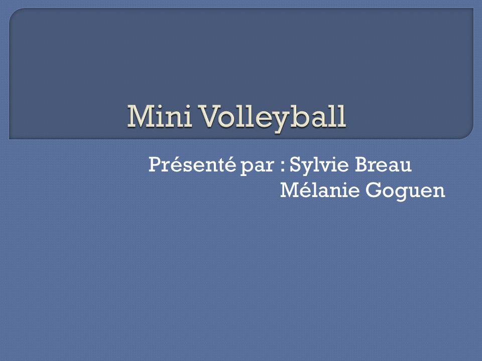 Présenté par : Sylvie Breau Mélanie Goguen