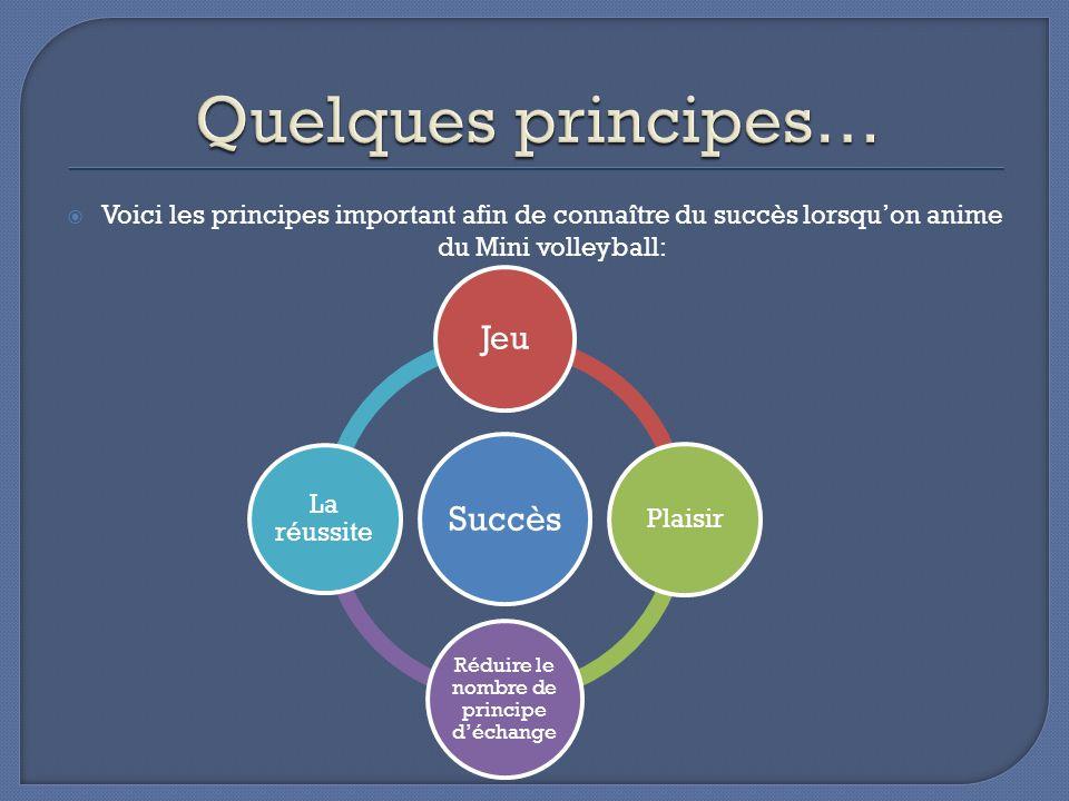 Voici les principes important afin de connaître du succès lorsquon anime du Mini volleyball: Succès Jeu Plaisir Réduire le nombre de principe déchange