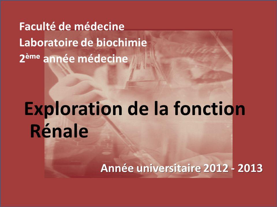 Faculté de médecine Laboratoire de biochimie 2 ème année médecine Exploration de la fonction Rénale Année universitaire 2012 - 2013