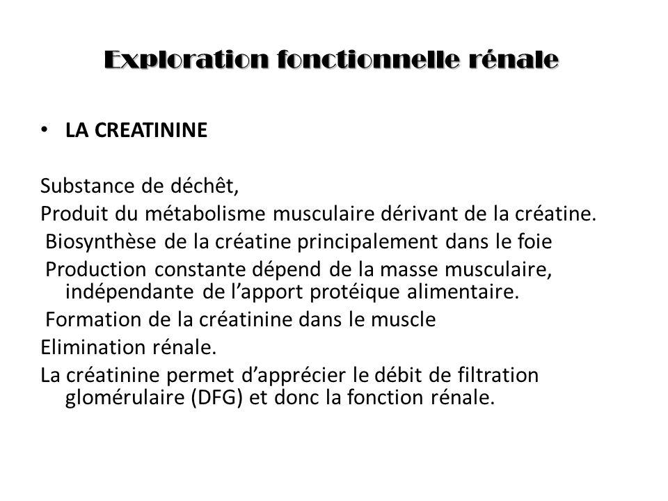 Exploration fonctionnelle rénale LA CREATININE Substance de déchêt, Produit du métabolisme musculaire dérivant de la créatine. Biosynthèse de la créat