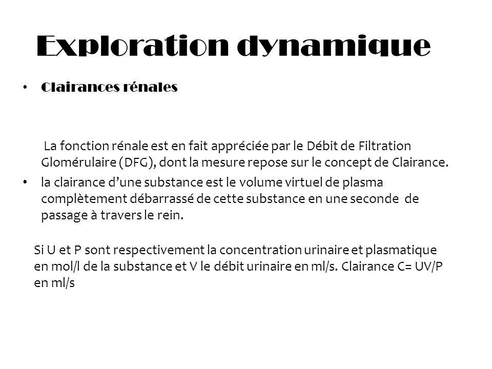 Exploration dynamique: Clairances rénales La fonction rénale est en fait appréciée par le Débit de Filtration Glomérulaire (DFG), dont la mesure repos