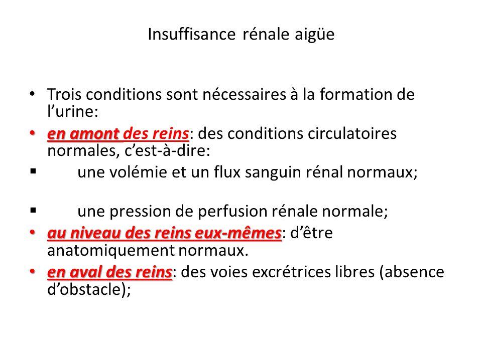 Insuffisance rénale aigüe Trois conditions sont nécessaires à la formation de lurine: en amont en amont des reins: des conditions circulatoires normal