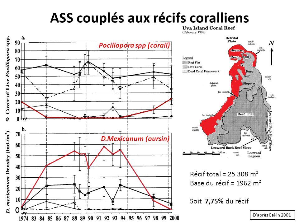 ASS couplés aux récifs coralliens Récif total = 25 308 m² Base du récif = 1962 m² Soit 7,75% du récif Pocillopora spp (corail) D.Mexicanum (oursin) Daprès Eakin 2001