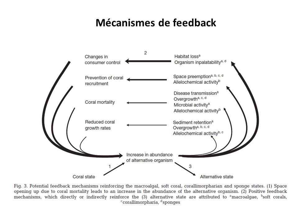 Mécanismes de feedback